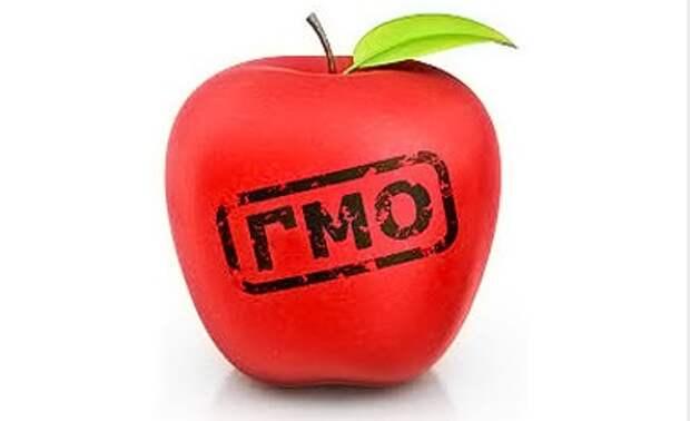 США советуют Украине заняться выращиванием ГМО