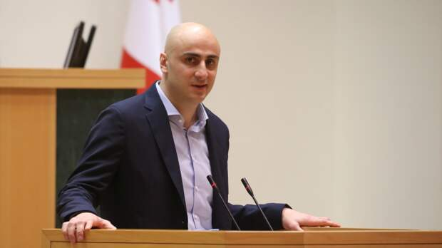 ЕС заводит в грузинский парламент атамана банды обкуренных отморозков.
