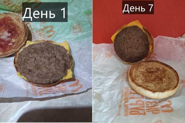 «Вечная» еда из Макдоналдса?