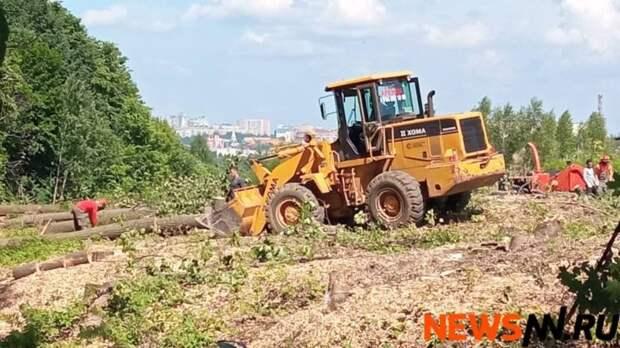 Фоторепортаж: территория у Щелоковского хутора превратилась в лесопилку