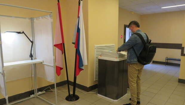 Общественная палата Подмосковья проверила ход голосования по Конституции в 29 округах