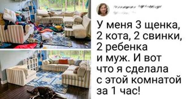 20+ человек, которые просто сделали уборку в квартире, а в результате получили новое жилище