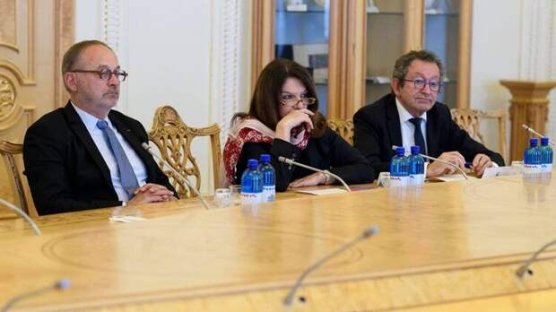 Французские сенаторы потребовали от МИД страны реакции на ситуацию с ультраправыми в Украине. Что это значит?