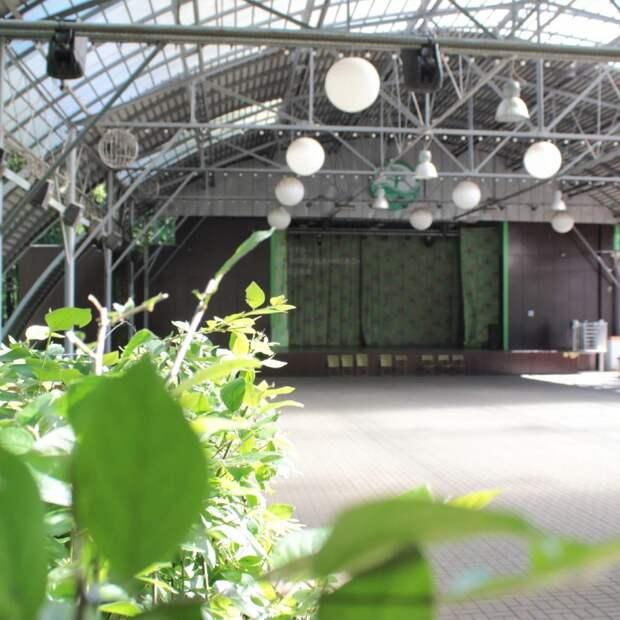 В Бабушкинском парке возобновятся бесплатные кинопоказы в «Зеленом театре»