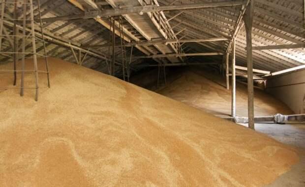 Россия завалила Латвию зерном благодаря антироссийским санкциям