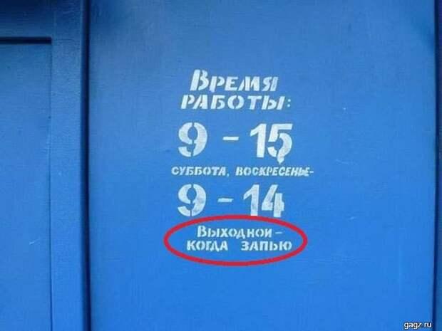 145689_smeshnaya_podborka_kartinok_s_nadpisyami_gagz_ru