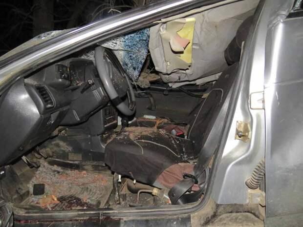 В Удмуртии водитель «ВАЗа» въехал в дерево
