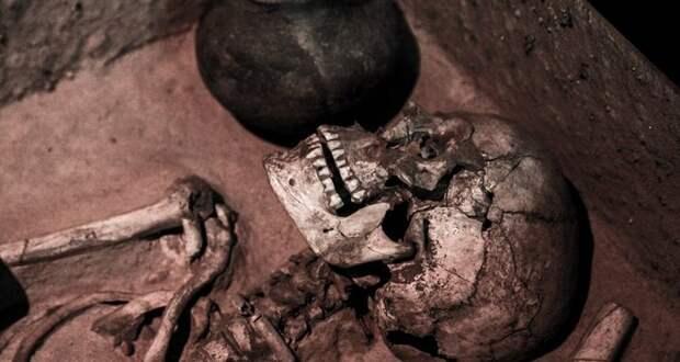 Почему трупы двигаются после смерти: необычное исследование