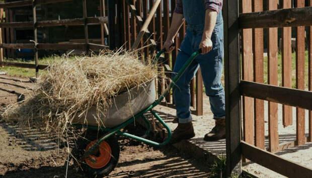 В Карелии работник обокрал ферму, на которой трудился