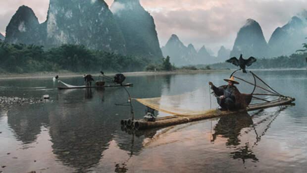«Морское золото» и элитный чай. Залог успешного бизнеса по-китайски