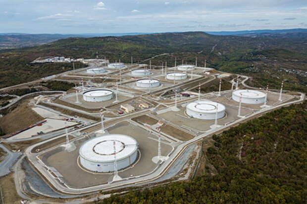 Экоактивистка усомнилась в нейтрализации последствий разлива нефти на КТК