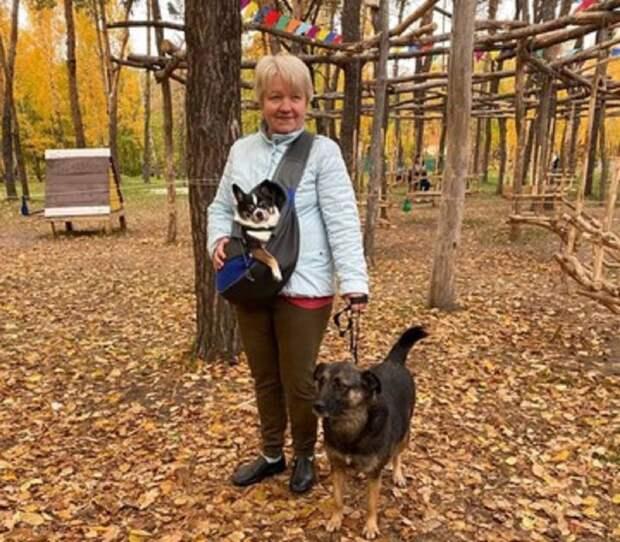 На выставке Пойдем домой в Белгороде новый дом нашли 9 собак