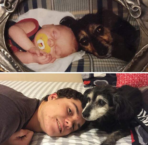 Шли годы, а их дружба только крепла… На эти фото без слёз не взглянешь