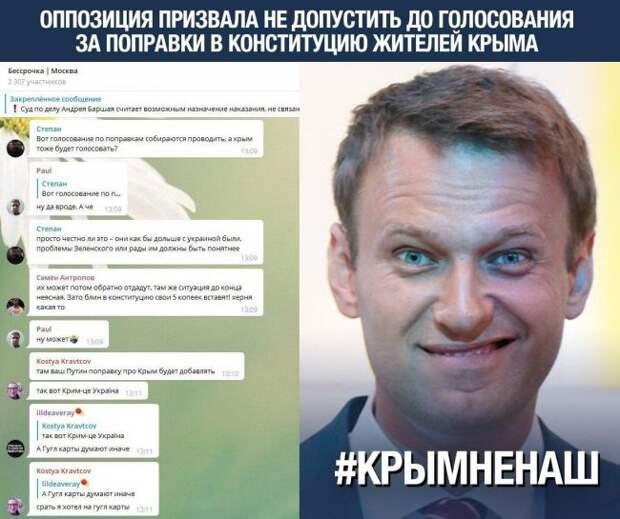 Хомяки Навального обсуждают права крымчан – детки заигрались в политику крым, навальнята, либералы