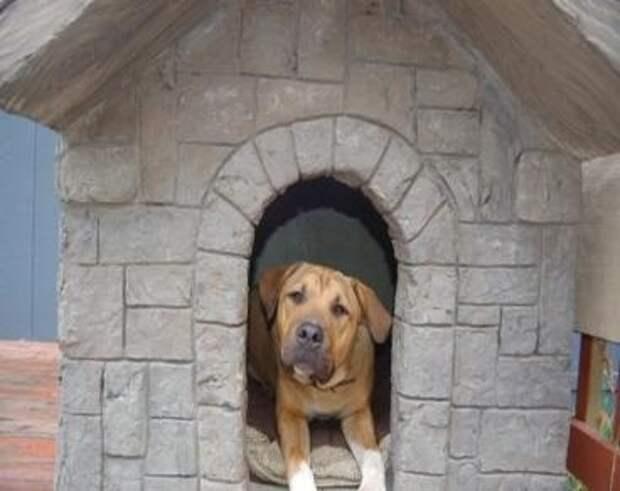 Отличные собачьи будки