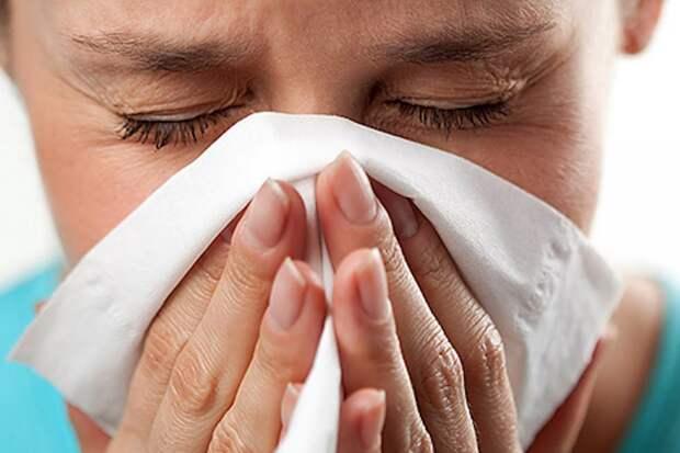 Внезапная аллергия: 5 советов для взрослых аллергиков