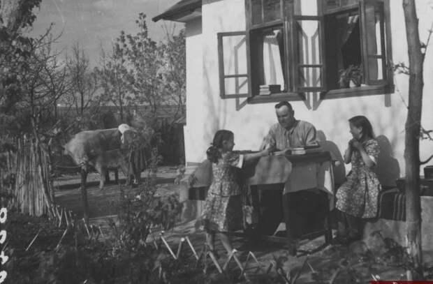 Национальное архивное агентство опубликовало редкие фото по случаю Международного дня семьи