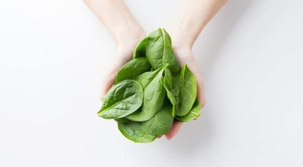 Шпинат: полезные свойства и вред. Можно ли есть шпинат сырым?