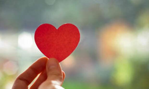 Эксперты подсчитали шансы россиян найти настоящую любовь
