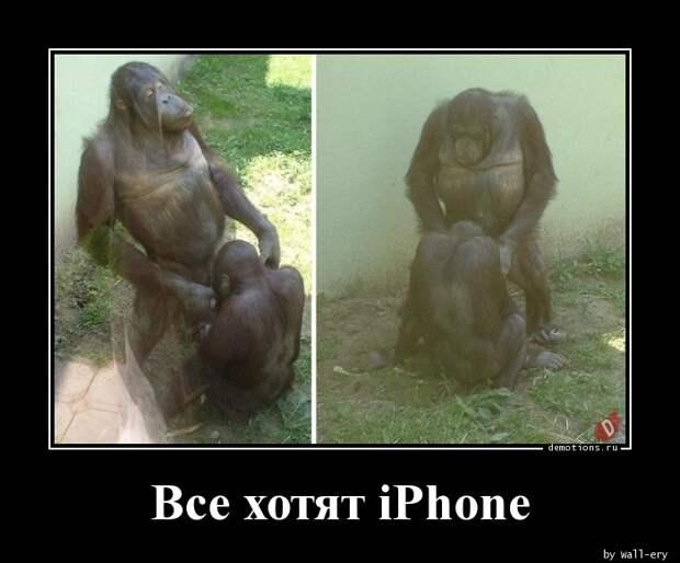 Все хотят iPhone демотиватор, демотиваторы, жизненно, картинки, подборка, прикол, смех, юмор