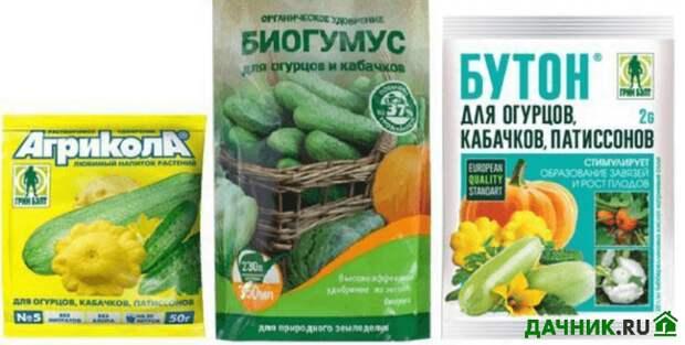 Подкормки для кабачков: минеральные, органические и аптечные