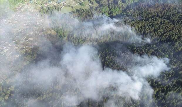 Режим ЧС введен на месте пожара в парке «Нечкинский» в Удмуртии