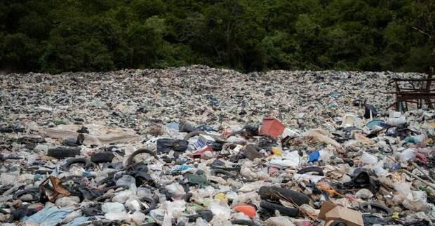Почти 6 миллионов рублей потратят на мусор в Симферополе