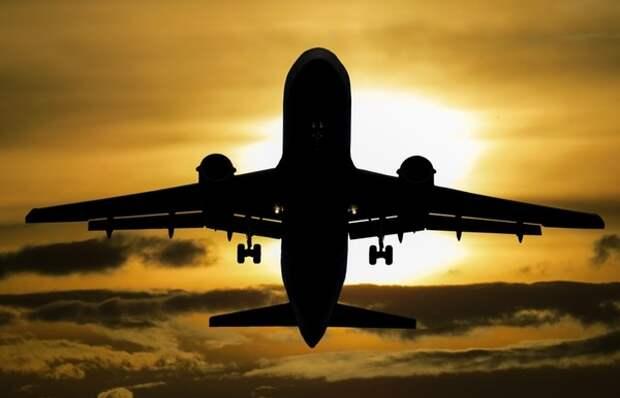 В IATA назвали сроки открытия границ между всеми странами