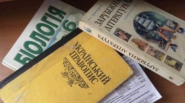 Киевлянка рассказала о плачевном состоянии украинского образования