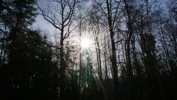 На Пасху в Московском регионе может выглянуть солнце