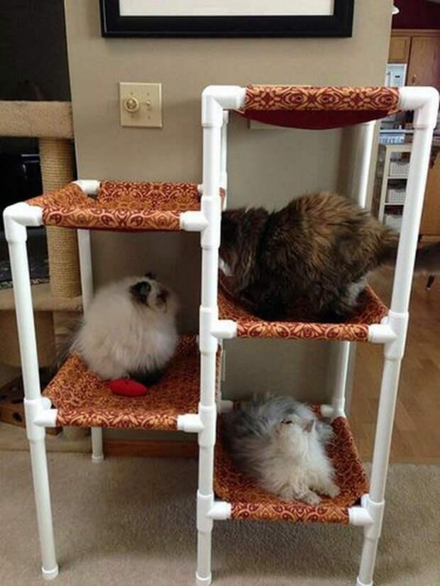 Многоярусный домик для кошек. | Фото: Фишки.