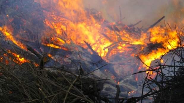 Перегрев мусора привел к крупному пожару на полигоне в Ленобласти