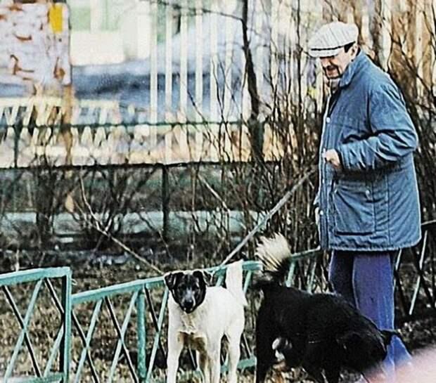 Георгий Вицин кормит бродячих собак. Москва, конец 90-ых.