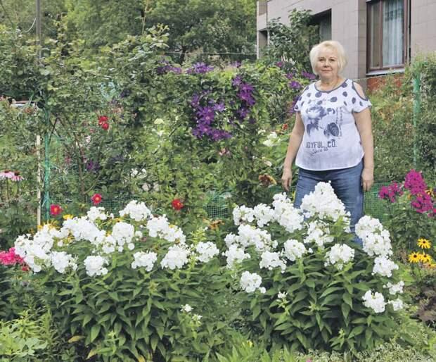Жительница Лодочной превратила двор в цветущий сад