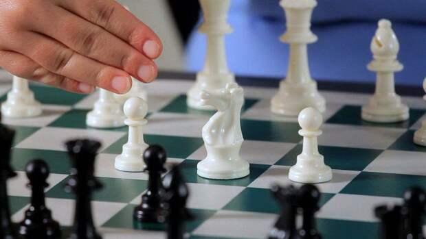 Испанская партия или Сицилианская защита? Лучшие шахматные дебюты