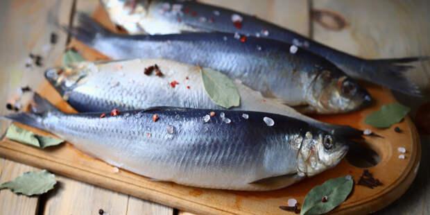 Правило трех «С»: врач назвал три недорогих и полезных вида рыбы