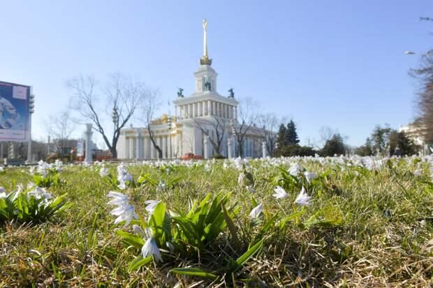 Синоптик рассказал, когда в Москве растает снег