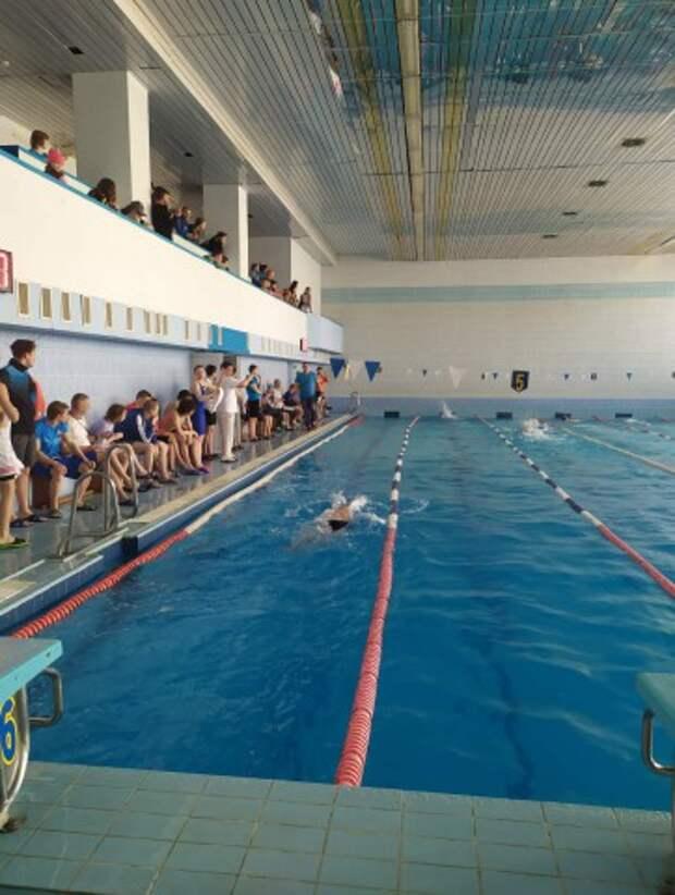 Чемпионат Беларуси по плаванию среди инвалидов по слуху собрал в Могилеве более полусотни участников.