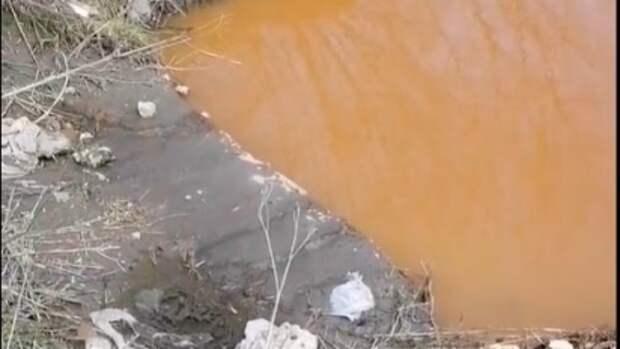 Река Каменка в Новосибирске окрасилась в рыжий цвет из-за неизвестных отходов