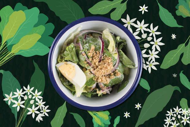 Рецепт зеленого салата с щавелем и огурцом