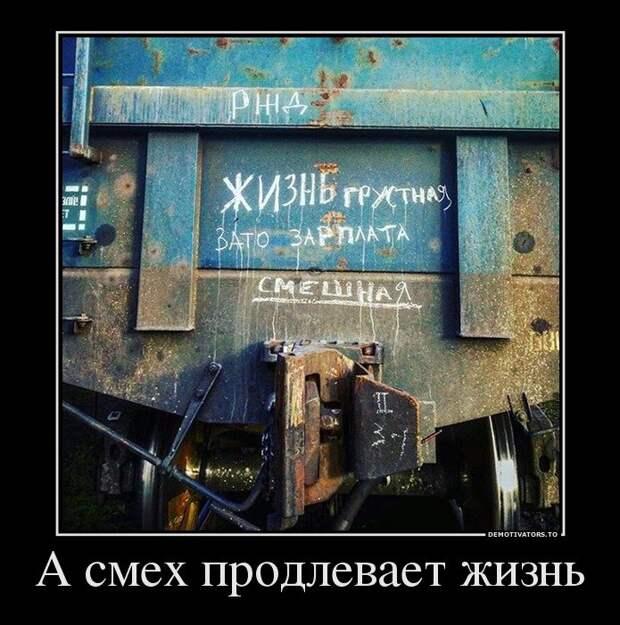 Свежие демотиваторы для хорошего настроения (12 фото)