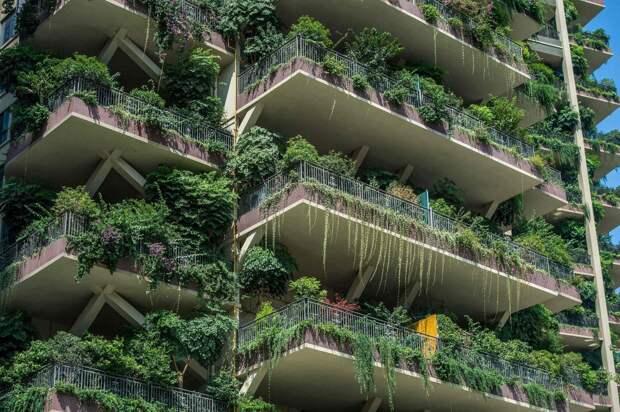 Зеленый район Чэнду