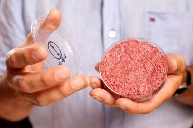 Котлеты из пробирки прокормят всех: зачем мы переходим на искусственное мясо