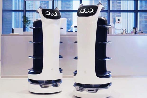 «Шоколадница» заменила официантов на роботов с кошачьими ушами