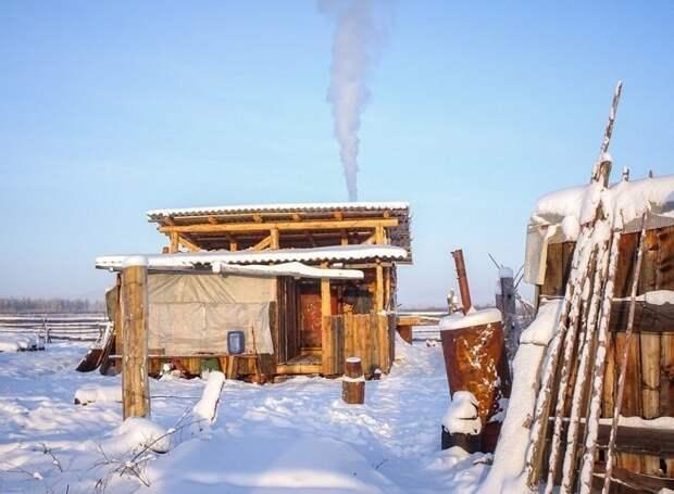 Один из сибирских домиков Порода, животные, лошадь, россия, саха, фото, якут, якутия