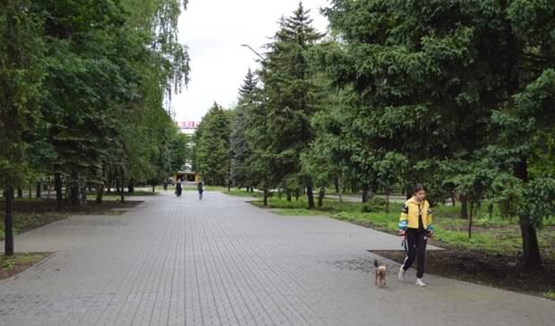 Светильники наполмиллиона рублей украли вреконструированном парке Новочеркасска