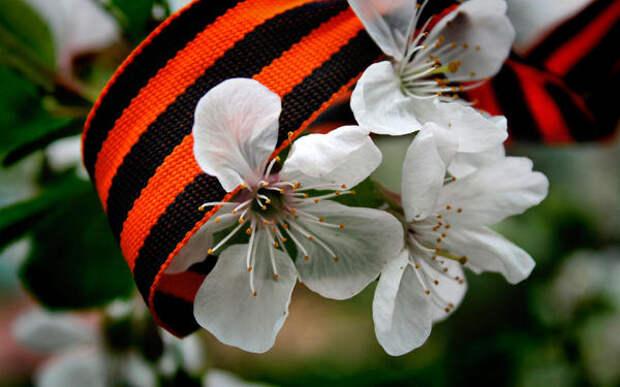 Как майские праздники повлияли на экономику?