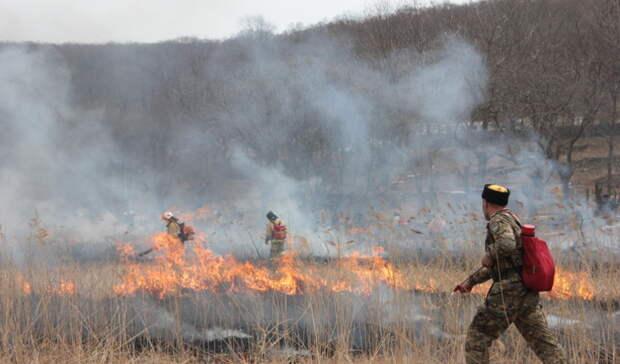 В двух районах Оренбуржья прогнозируется пятый класс пожарной опасности