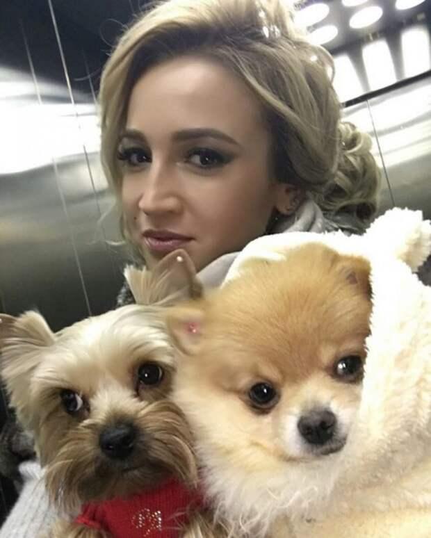 ольга бузова с двумя собаками