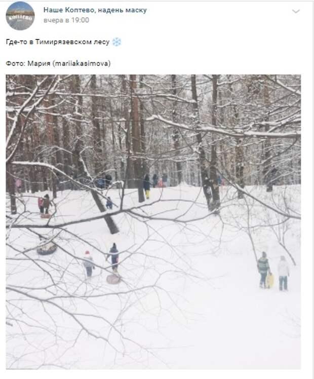 Фото дня: любители «ватрушек» в Тимирязевском лесу